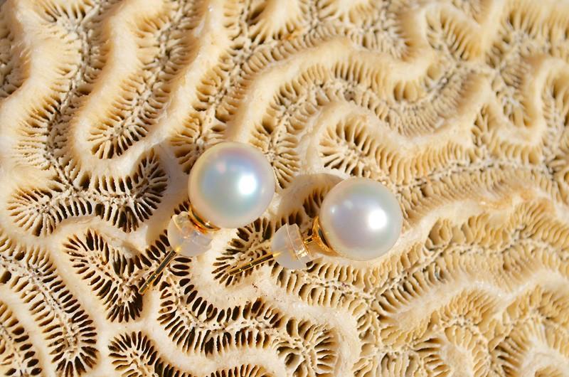 Clous d'oreilles une perles d'Australie blanche