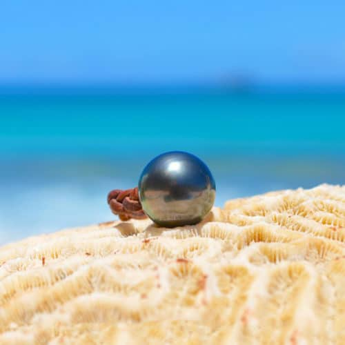 Braided ring 1 Tahitian pearl - 15mm