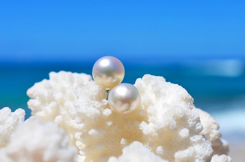 Post earrings Australian white pearl