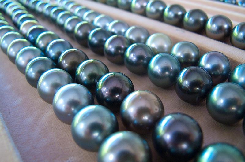 Tahitian Black Pearl